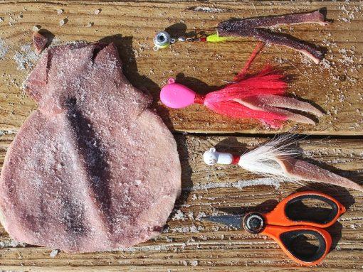 Squidy Bits Jumbo Squid Slab