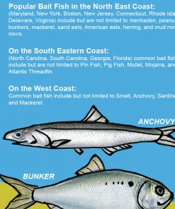 Saltwater anglers guide to fishing with bait