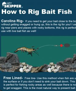 Saltwater anglers guide to fishing with bait How to Rig bait fish